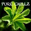 Pure Chillz - Volume One