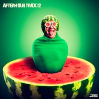 AFTERHOUR TRAX 12 (GREEN MARTIAN)