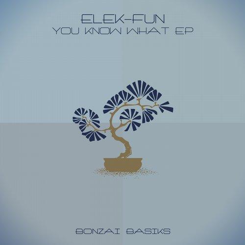 ELEK-FUN – YOU KNOW WHAT EP (BONZAI BASIKS)