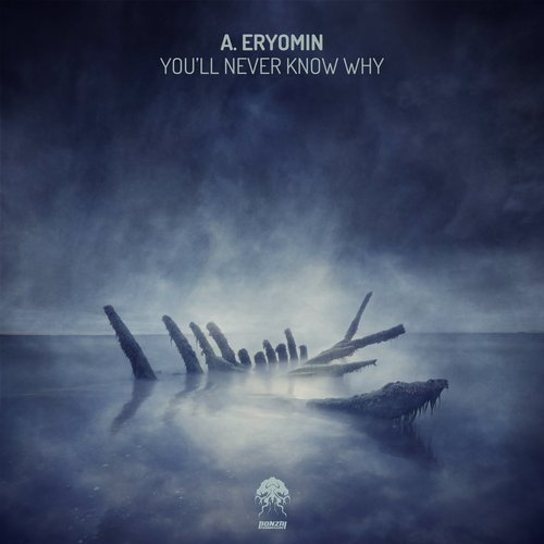 A.ERYOMIN – YOU'LL NEVER KNOW WHY (BONZAI PROGRESSIVE)