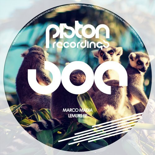 MARCO MADIA – LEMURS EP (PISTON RECORDINGS)