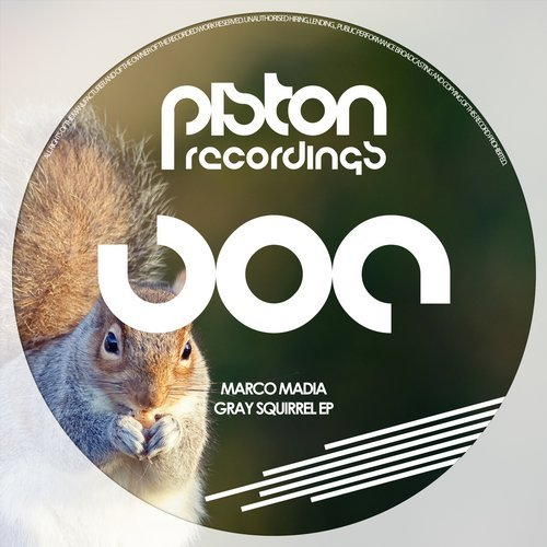 MARCO MADIA – GRAY SQUIRREL EP (PISTON RECORDINGS)