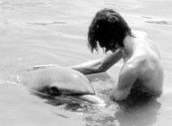 man having sex with dolphin