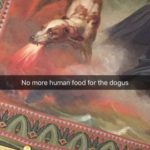 louvre dog ceiling