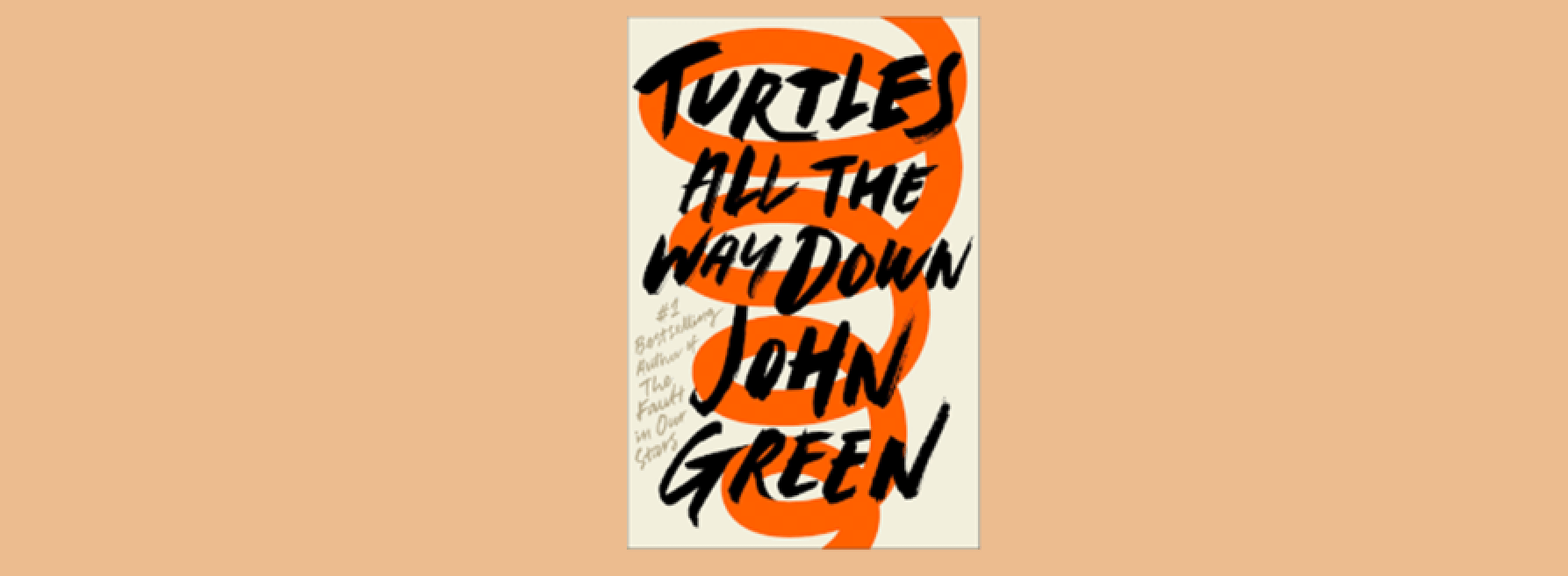 Thoughts on Turtles All the Way Down