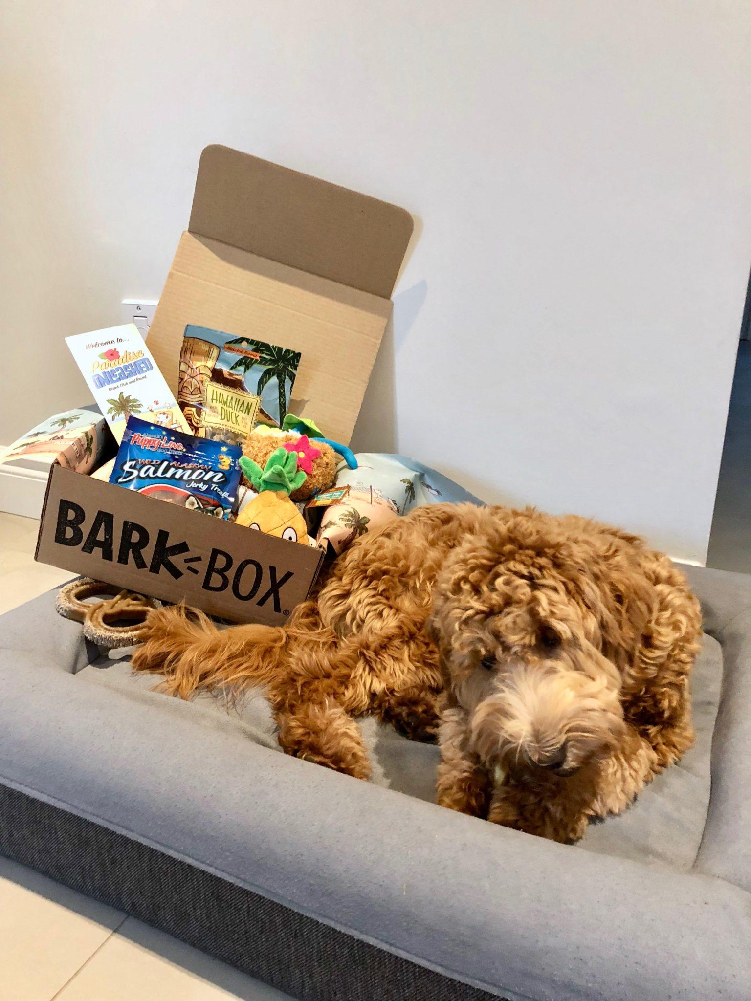 Review: Barkbox February 2018
