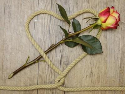 PoeticamenteVenerdì – La madre di Edmondo De Amicis