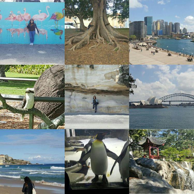 Diario Letterario di un'italiana in Australia - Capitolo 1: Welcome to Sydney