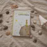 Un libro al cinema il piccolo principe il film