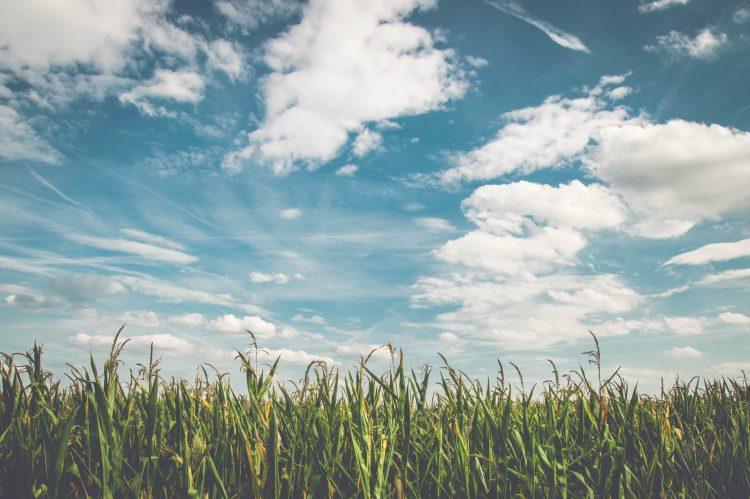 La poesia della settimana: Il cielo è di tutti Gianno Rodari