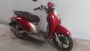 Rent a motorbike in Cebu city near Fuente Osmena area-Free delivery