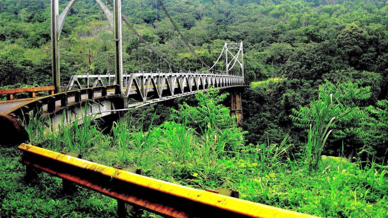 Mount Arenal bridge