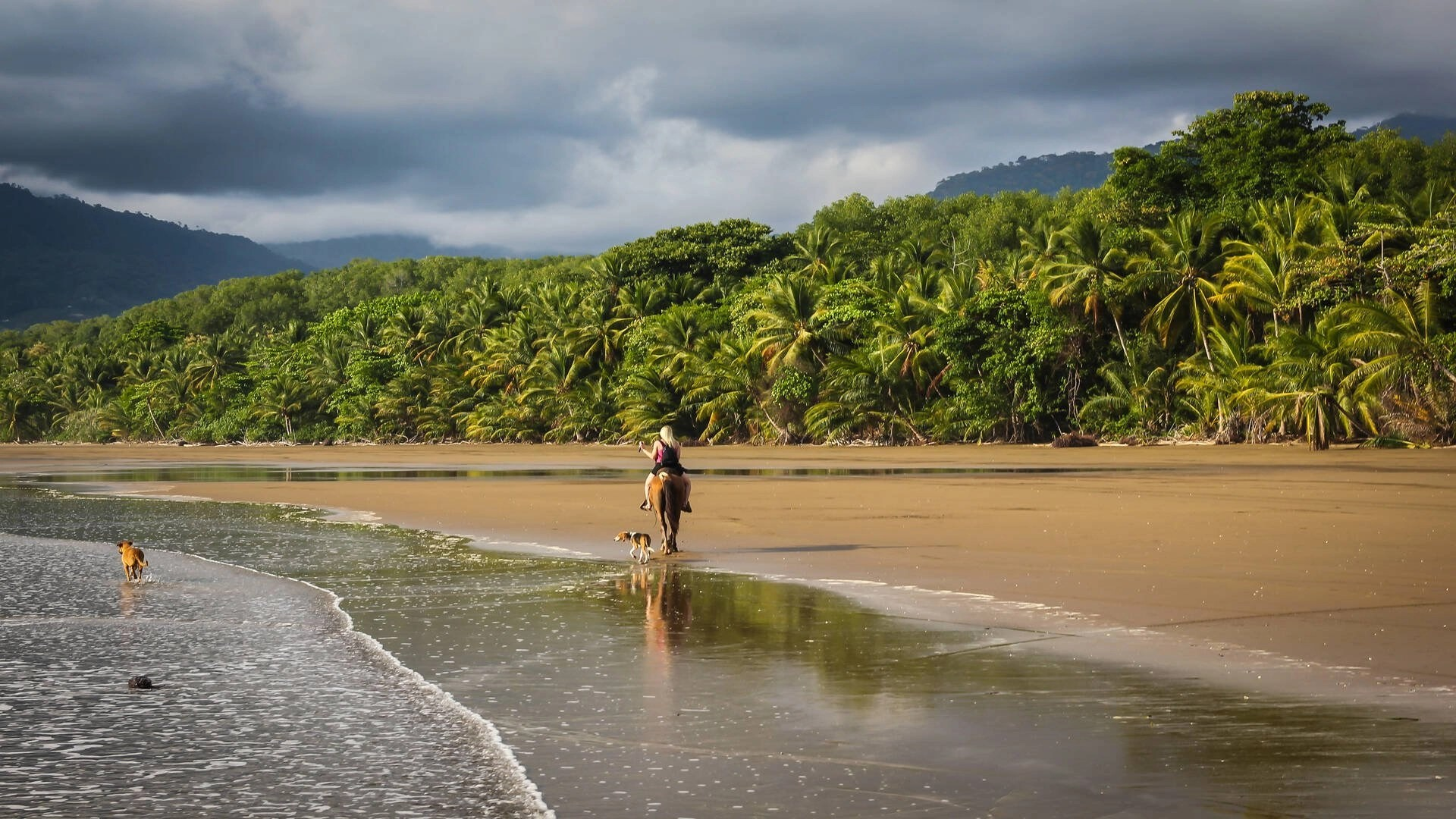 8 tips for traveling alone in Costa Rica