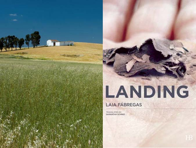 Review | Landing, Laia Fàbregas | Book of the Week