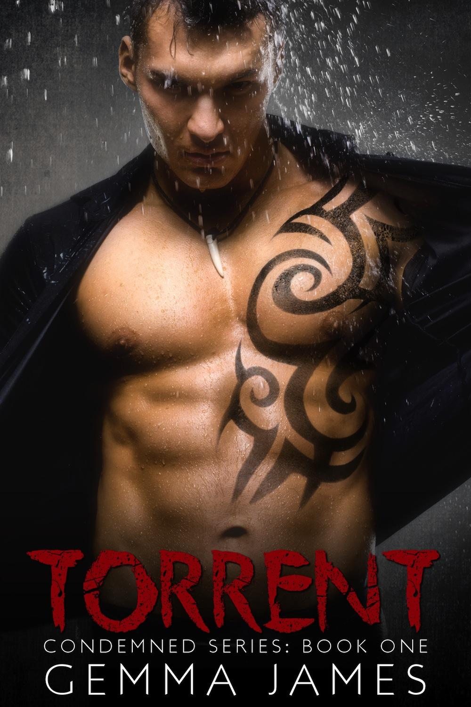 TorrentEbook.jpg