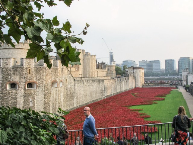 The Tower Poppies seen while approaching the Tower.
