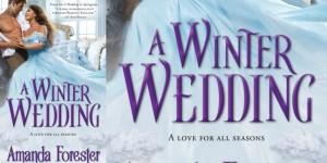 winter wedding banner