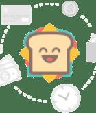 urdu dictionary