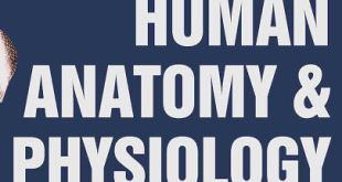 Human Anatomy and Physiology 9th edition.
