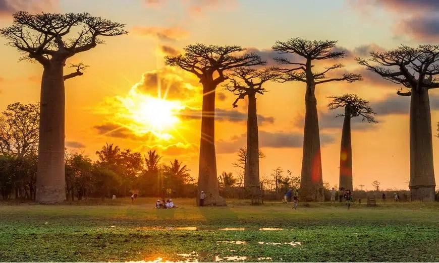 Madagascar : une destination touristique plus qu'intéressante