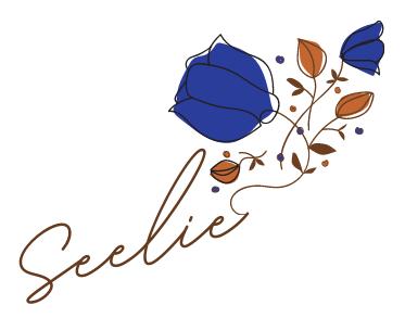 seelie signature, created with Canva