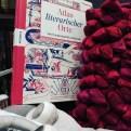 Atlas literarischer Orte - Buch vor rotem Kissen