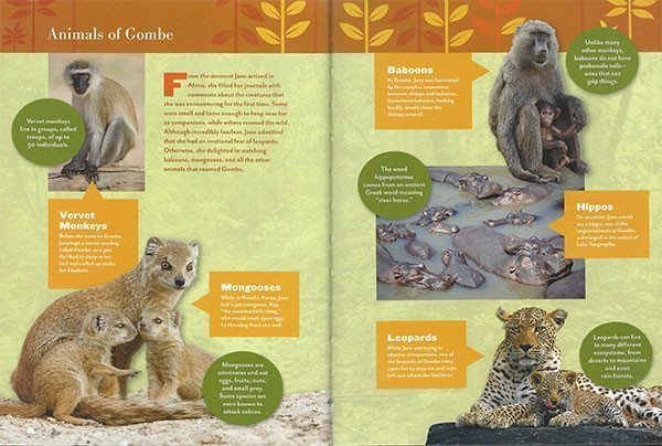 gr_animals_of_gombe_600