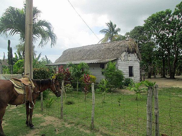 Cuban home