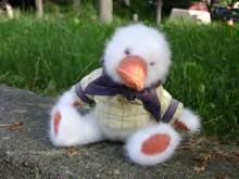 stuffed duck