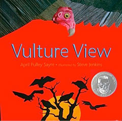 Vulture View