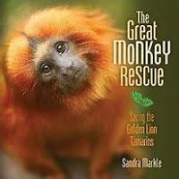 Great Monkey Rescue
