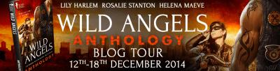 wild angels banner