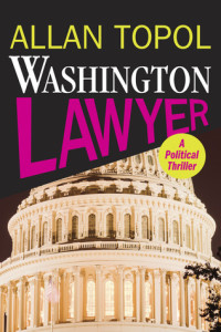 wash lawyer cover work 1.indd