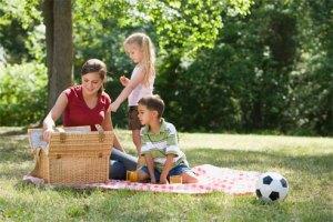 picnic healthy way af