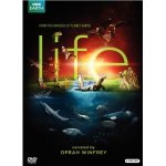 BBC Life DVD Giveaway