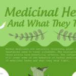 The Benefits of Herbal Medicine