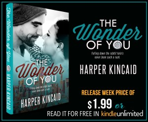 THEWONDEROFYOU LIVEKU 1 300x247 The Wonder of You by Harper Kincaid Blog Tour