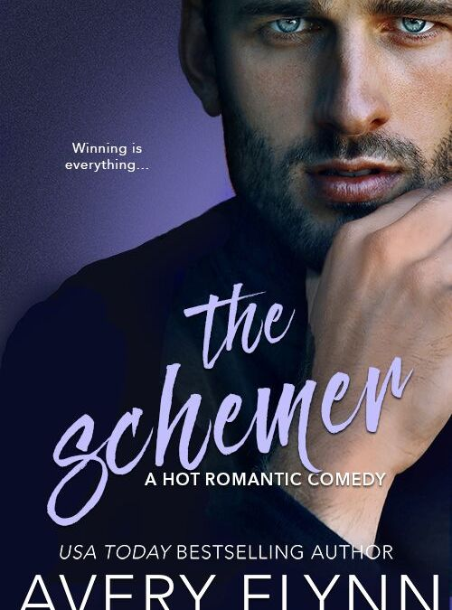 The Schemer by Avery Flynn