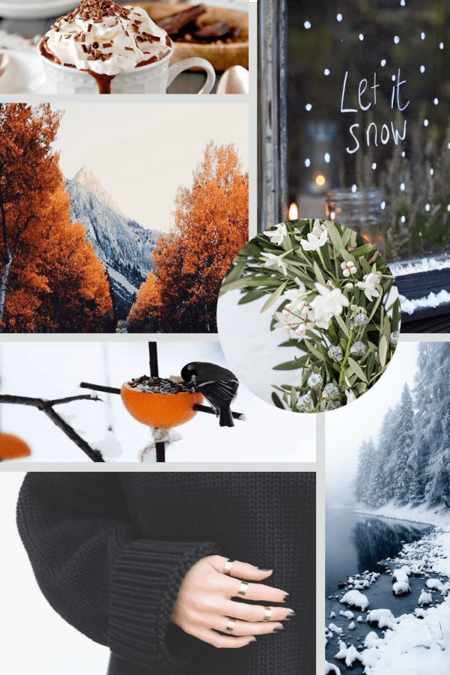 Winter moodboard