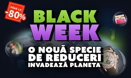 black-week-elefant