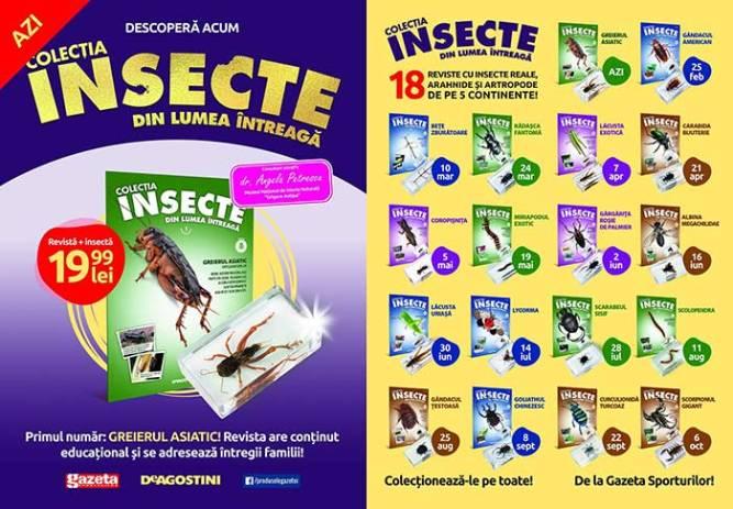 Insecte din lumea întreagă