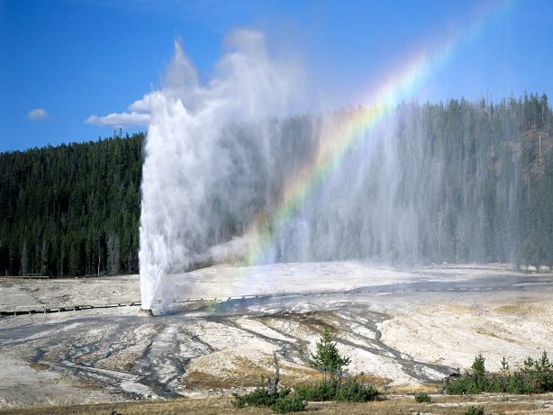 Old Faithful, which senior tourists were not allowed to look at