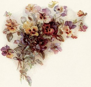Victorian posy of pansies