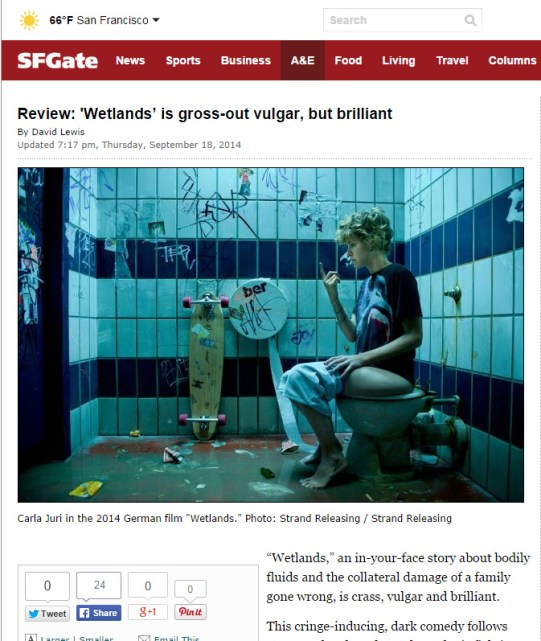 Gross toilet photo in Sf Chron
