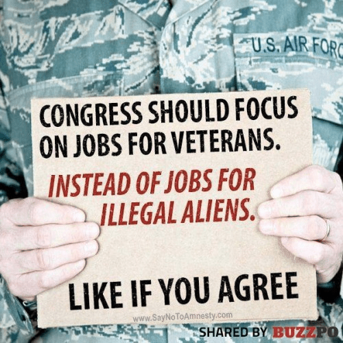 Congress should focus on jobs for veterans not illegals