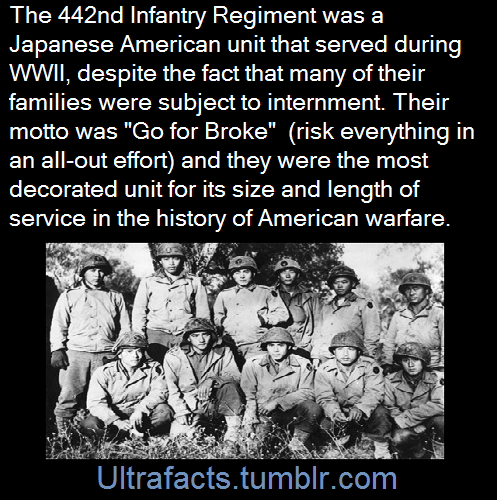 442nd Infantry Regiment Japanese