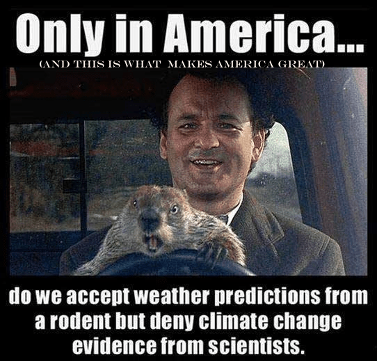 Groundhog predicts weather not science