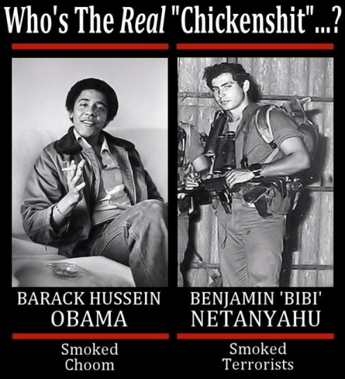 Netanyahu and Obama the real chickenshit
