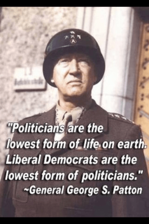 Patton on liberal Democrats