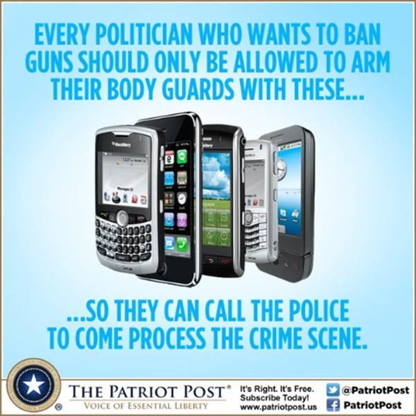 Gun banning politicians